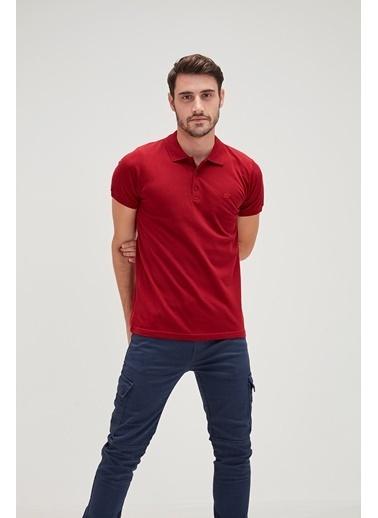 Bad Bear Erkek Koyu Yeşıl Polo Yaka Tışört Basic Pique Polo T-Shirt Bordo